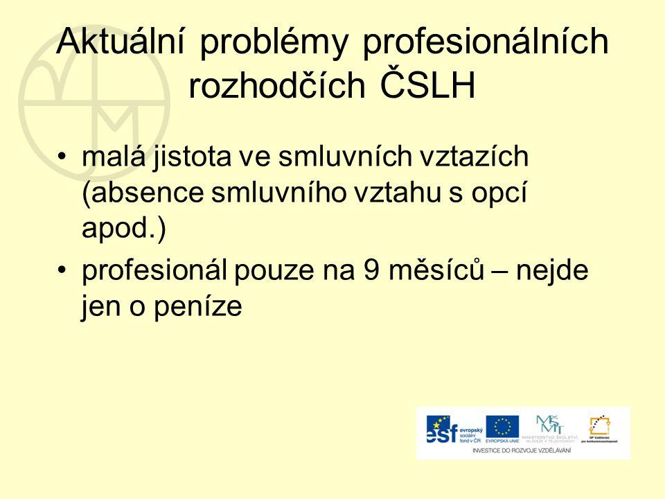 Aktuální problémy profesionálních rozhodčích ČSLH malá jistota ve smluvních vztazích (absence smluvního vztahu s opcí apod.) profesionál pouze na 9 měsíců – nejde jen o peníze