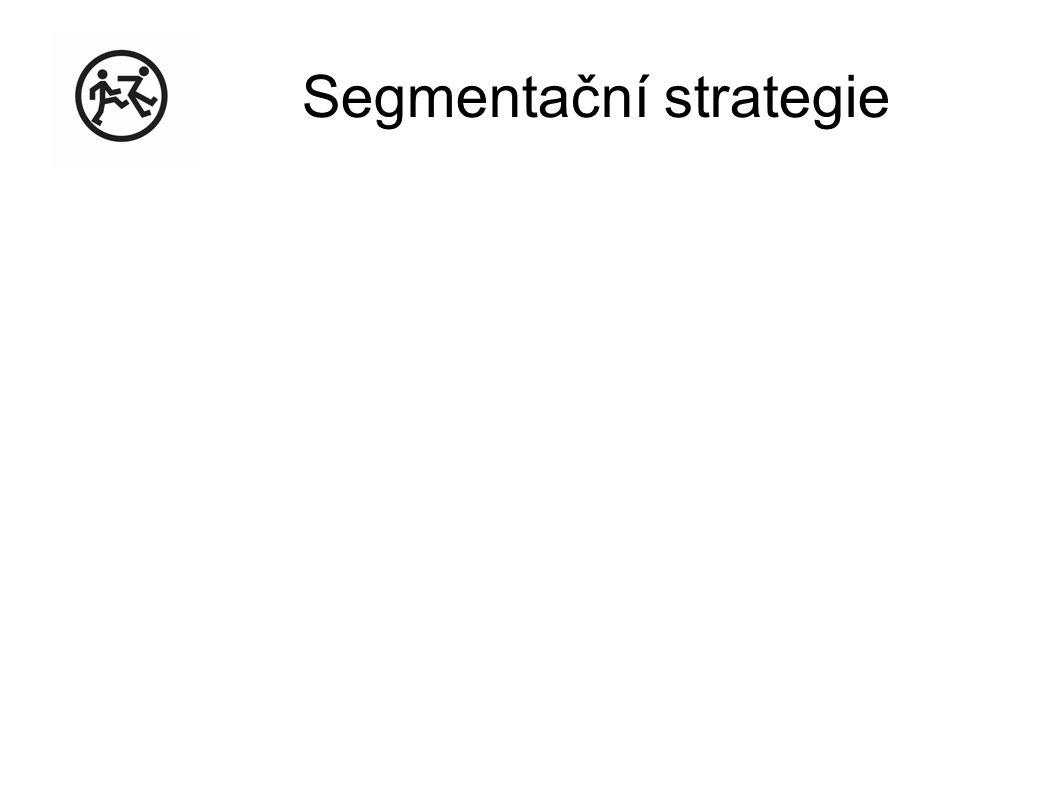 Segmentační strategie