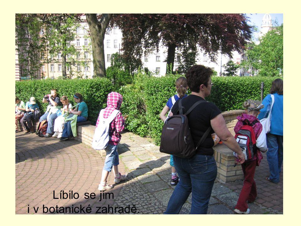 Líbilo se jim i v botanické zahradě.