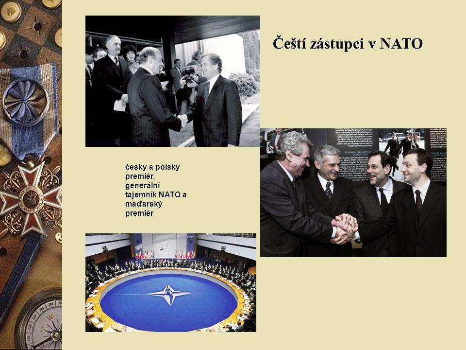 Severoatlantická aliance je euroatlantická mezinárodní vojenská organizace.Organizace byla založena 4. dubna 1949 podpisem tzv. Washingtonské smlouvy,