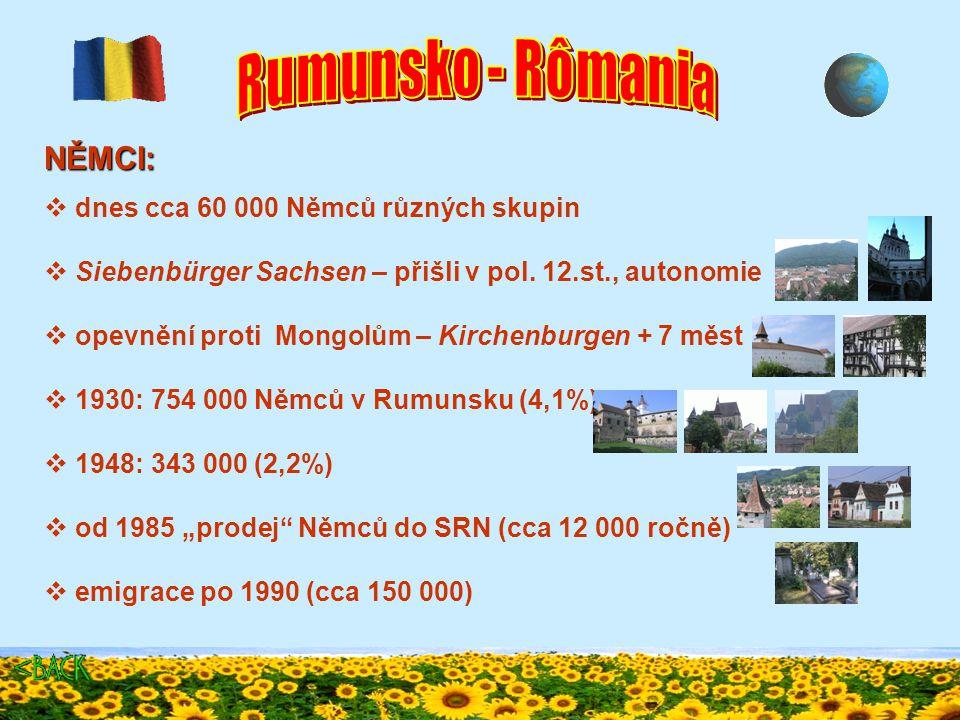 MAĎAŘI:  cca 1,5 mil lidí, v Transylvánii tvoří 20%  Székely v Transylvánii - příbuzní Maďarů, snad od 11.st  Csángó v Moldavsku - uprchli kvůli náboženství z Trans.