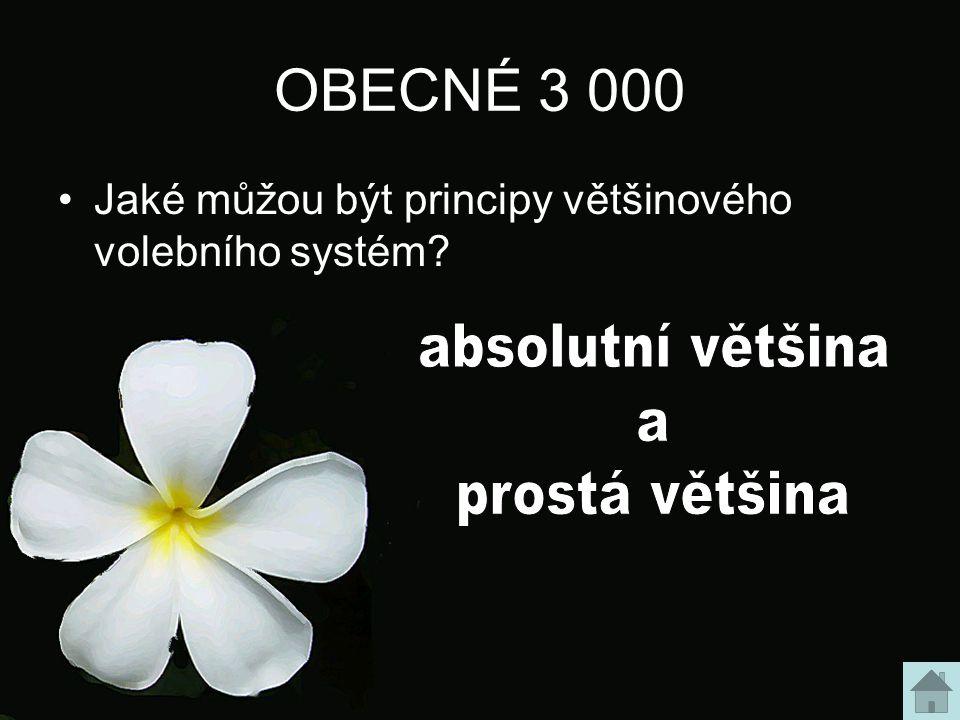 OBECNÉ 3 000 Jaké můžou být principy většinového volebního systém