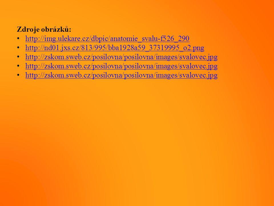 Zdroje obrázků: http://img.ulekare.cz/dbpic/anatomie_svalu-f526_290 http://nd01.jxs.cz/813/995/bba1928a59_37319995_o2.png http://zskom.sweb.cz/posilov