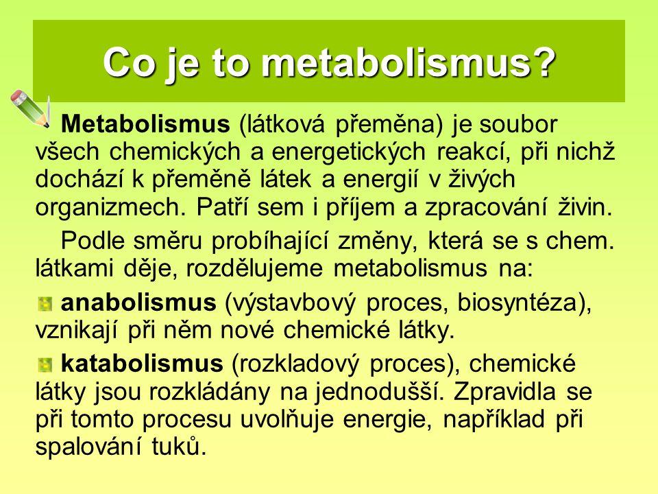 Co je to metabolismus? Metabolismus (látková přeměna) je soubor všech chemických a energetických reakcí, při nichž dochází k přeměně látek a energií v