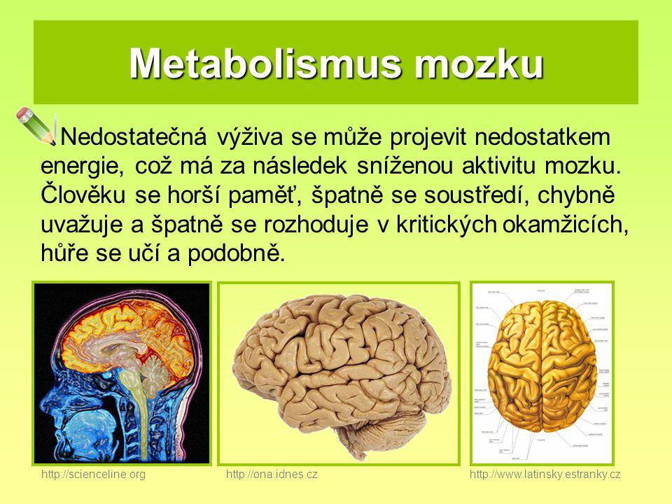 Metabolismus mozku Nedostatečná výživa se může projevit nedostatkem energie, což má za následek sníženou aktivitu mozku. Člověku se horší paměť, špatn