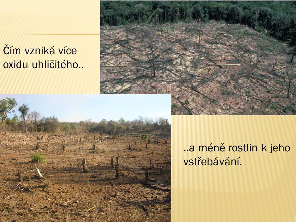 Čím vzniká více oxidu uhličitého....a méně rostlin k jeho vstřebávání.