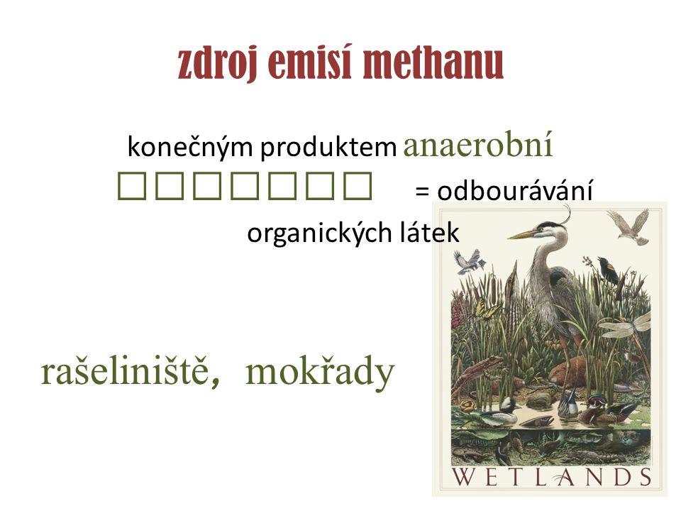 zdroj emisí methanu konečným produktem anaerobní redukce = odbourávání organických látek rašeliniště, mokřady