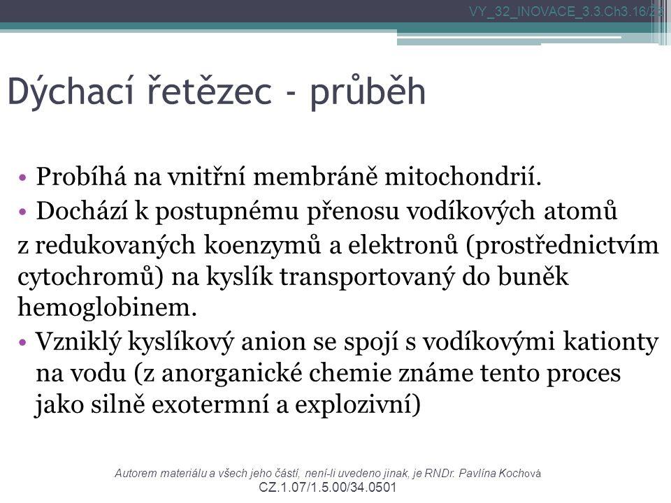 Dýchací řetězec - průběh Probíhá na vnitřní membráně mitochondrií.