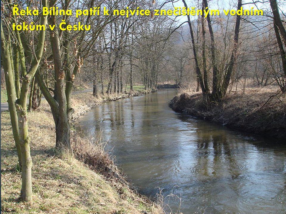Řeka Bílina patří k nejvíce znečištěným vodním tokům v Česku