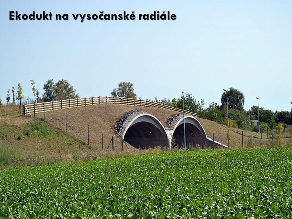Ekodukt na vysočanské radiále