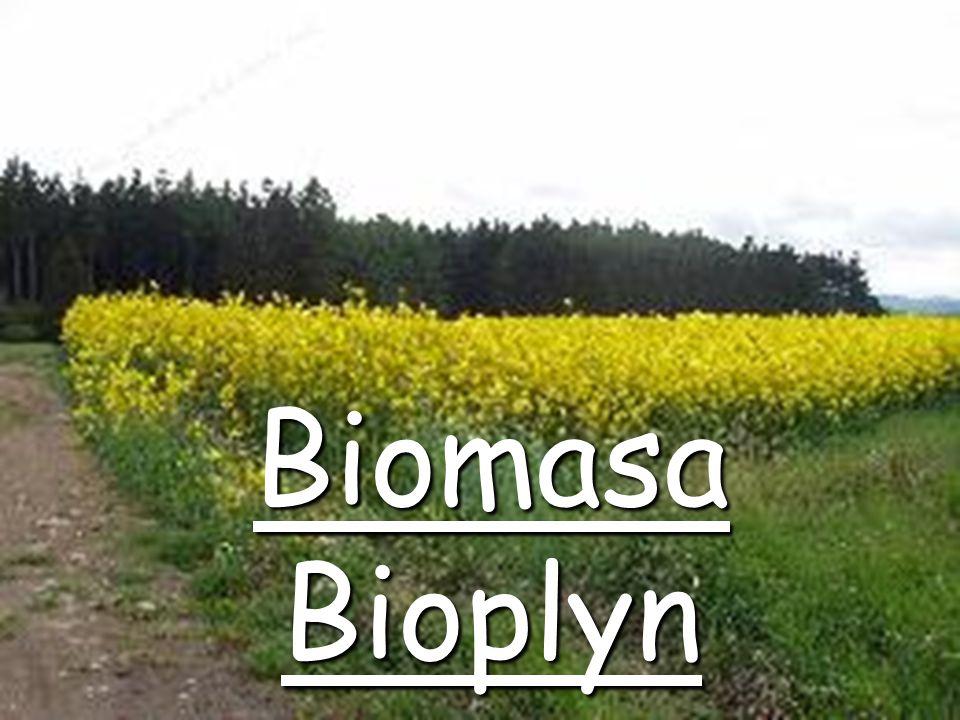 Energetické využití biomasy SkupinaTechnologieProduktyVýstupy SpalováníTeplo, elektřina Chemické přeměny (suché procesy) Zplynování Olej, plyn, dehet, metan, čpavek, metanol Elektřina, teplo, pohon vozidel Pyrolýza Chemické přeměny ve vodním prostředí ZkapalňováníOlej Esterifikace Metylester řepkového oleje (MEŘO)-bionafta Pohon vozidel Biologické procesy Anaerobní procesy Bioplyn, metan Elektřina, teplo, pohon vozidel Alkoholové kvašení EtanolPohon vozidel Kompostování Teplo (z chlazení kompostu)