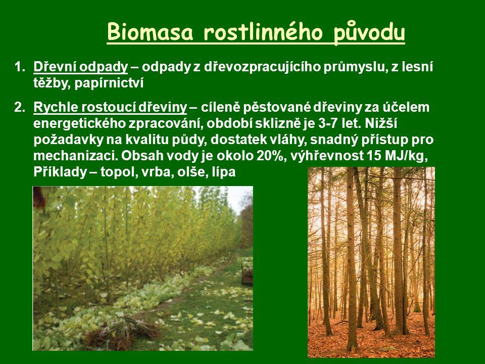 Biomasa rostlinného původu 1.Dřevní odpady – odpady z dřevozpracujícího průmyslu, z lesní těžby, papírnictví 2.Rychle rostoucí dřeviny – cíleně pěstov