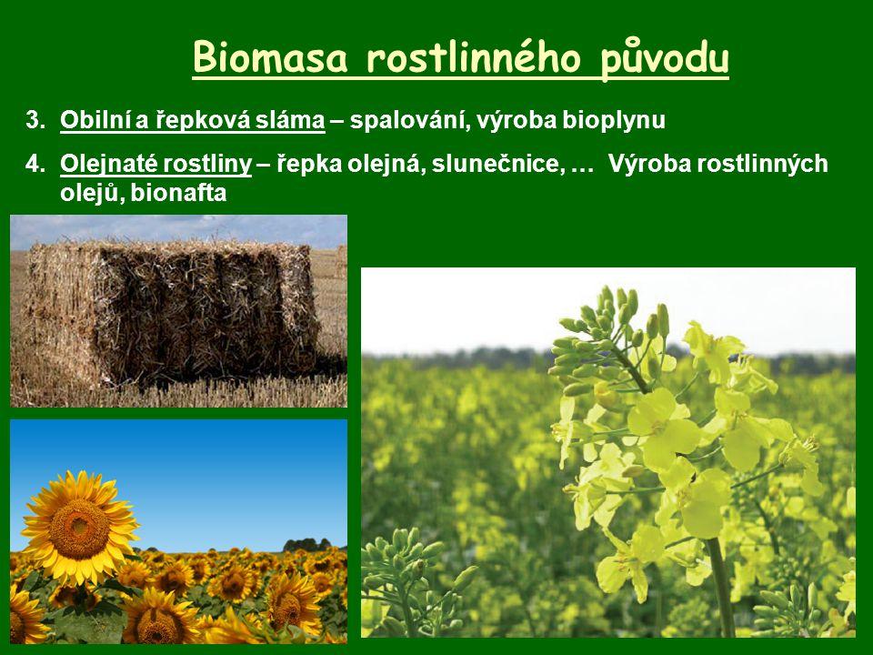 Biomasa rostlinného původu 3.Obilní a řepková sláma – spalování, výroba bioplynu 4.Olejnaté rostliny – řepka olejná, slunečnice, … Výroba rostlinných