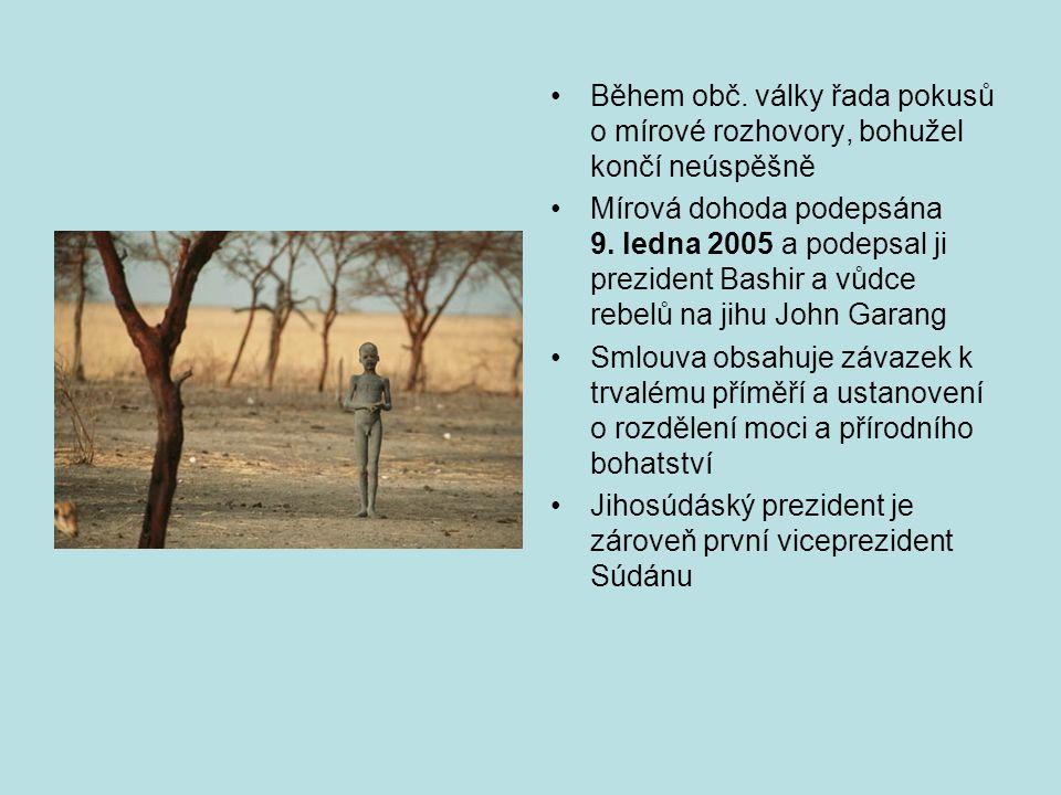 Ačkoli byla podepsána mírová dohoda, lokální konflikty stále nekončí, protože problémy v Súdánu jsou staré a komplikované a často v nich tápou i sami Súdánci.