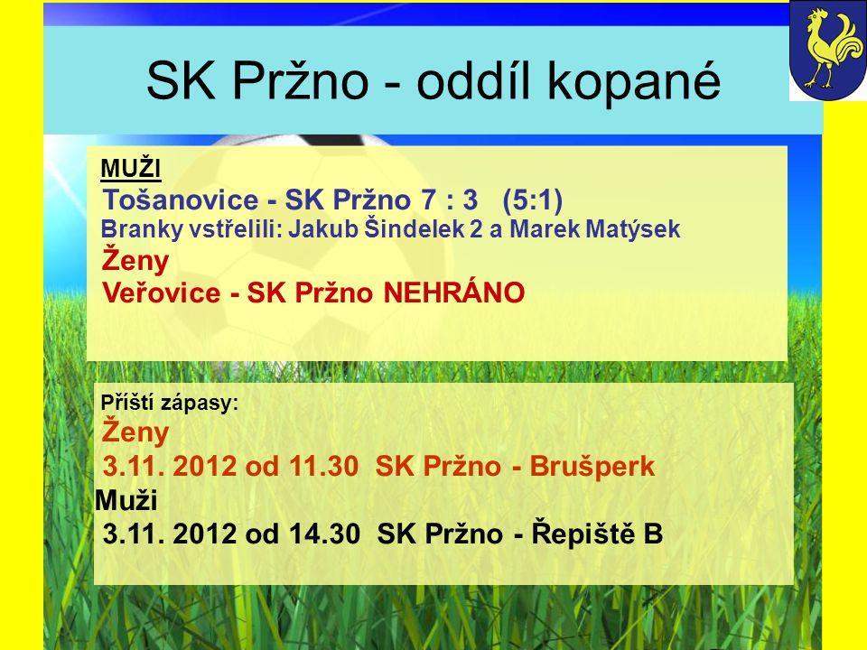 SK Pržno - oddíl kopané Příští zápasy: Ženy 3.11.2012 od 11.30 SK Pržno - Brušperk Muži 3.11.