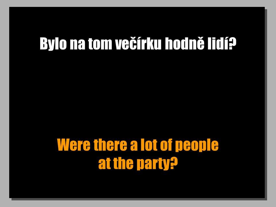 Bylo na tom večírku hodně lidí? Were there a lot of people at the party?