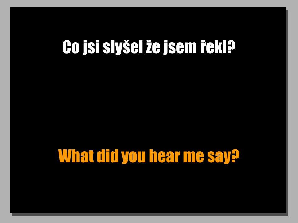 Co jsi slyšel že jsem řekl What did you hear me say