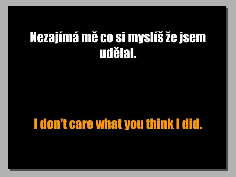 Nezajímá mě co si myslíš že jsem udělal. I don t care what you think I did.