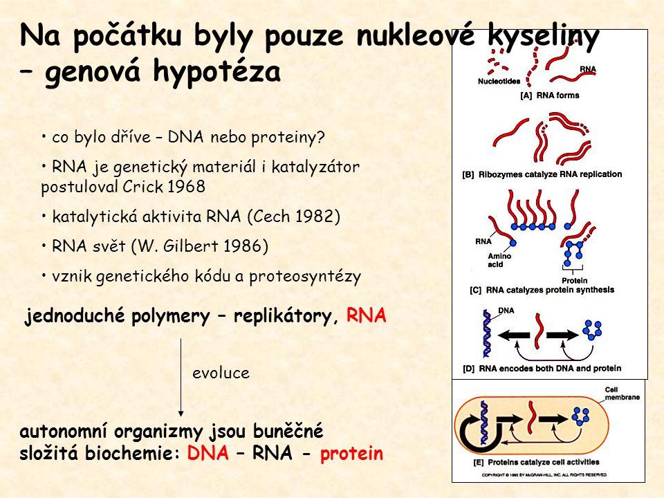 autonomní organizmy jsou buněčné složitá biochemie: DNA – RNA - protein jednoduché polymery – replikátory, RNA evoluce co bylo dříve – DNA nebo protei