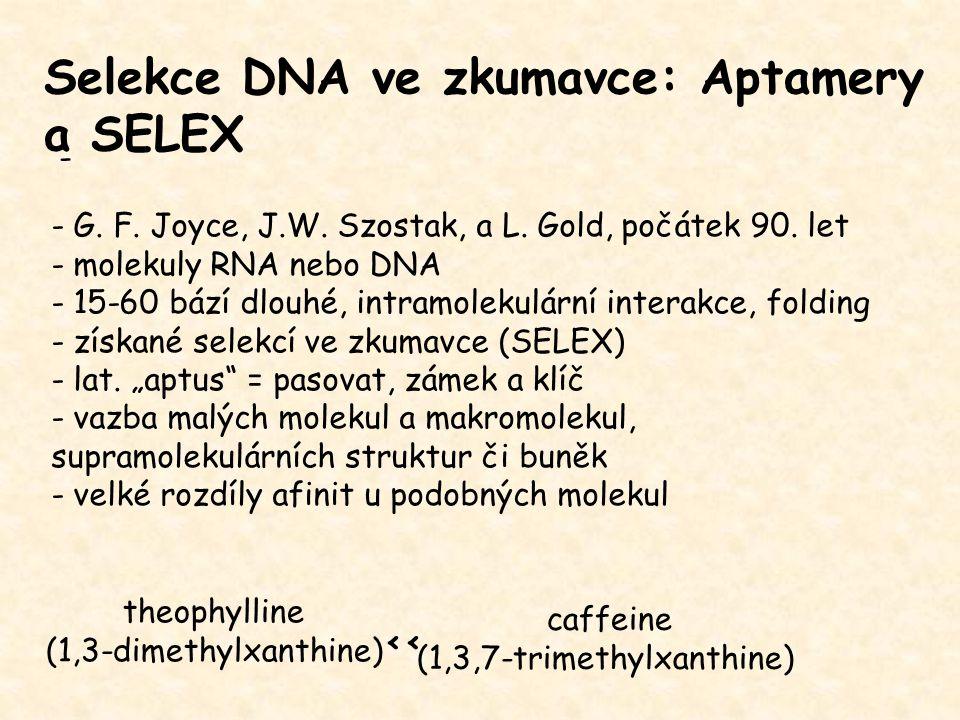 Selekce DNA ve zkumavce: Aptamery a SELEX - - G. F. Joyce, J.W. Szostak, a L. Gold, počátek 90. let - molekuly RNA nebo DNA - 15-60 bází dlouhé, intra