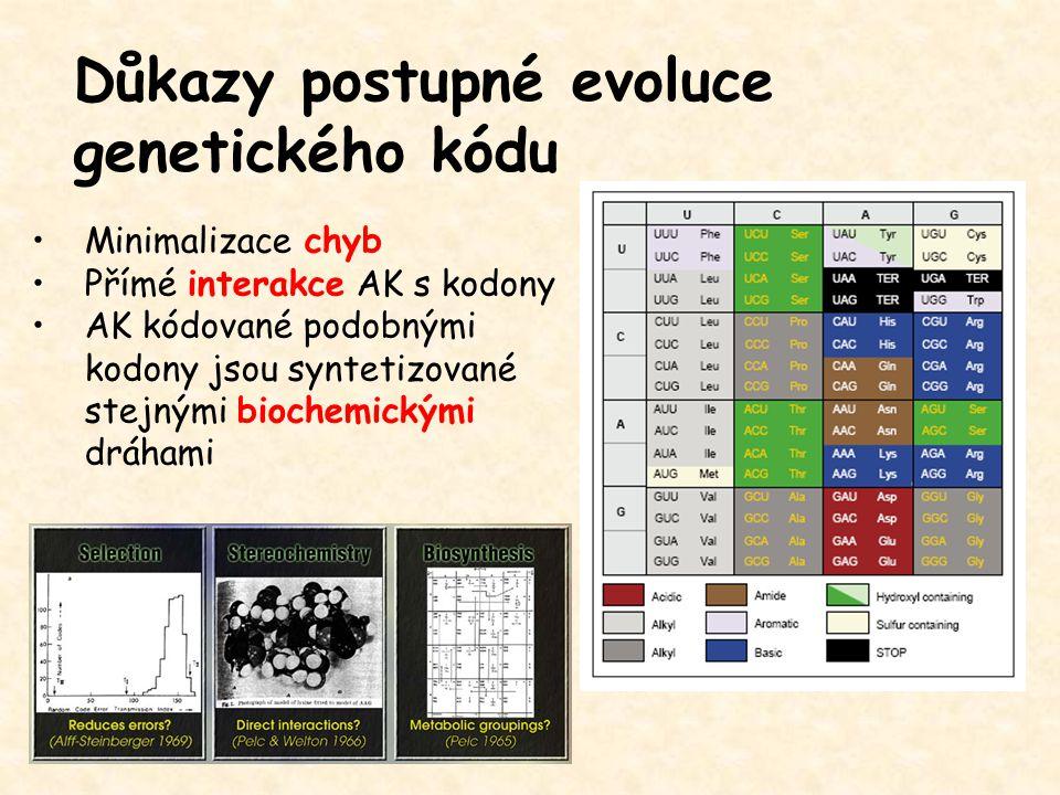 Důkazy postupné evoluce genetického kódu Minimalizace chyb Přímé interakce AK s kodony AK kódované podobnými kodony jsou syntetizované stejnými bioche