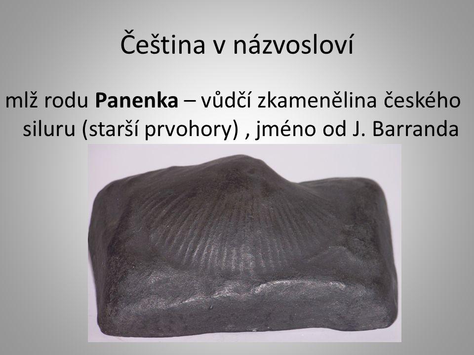 Čeština v názvosloví mlž rodu Panenka – vůdčí zkamenělina českého siluru (starší prvohory), jméno od J. Barranda