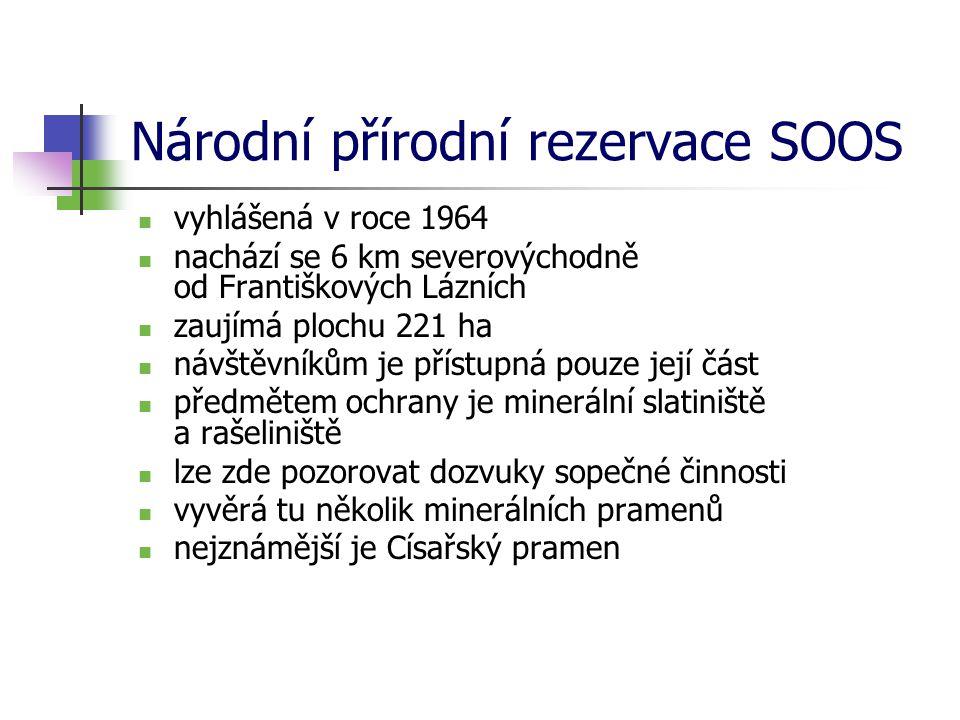 Národní přírodní rezervace SOOS vyhlášená v roce 1964 nachází se 6 km severovýchodně od Františkových Lázních zaujímá plochu 221 ha návštěvníkům je př