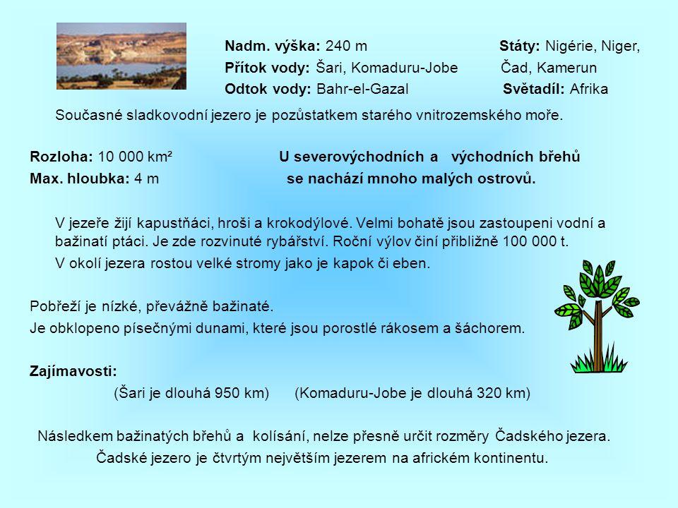 Současné sladkovodní jezero je pozůstatkem starého vnitrozemského moře. Rozloha: 10 000 km² U severovýchodních a východních břehů Max. hloubka: 4 m se