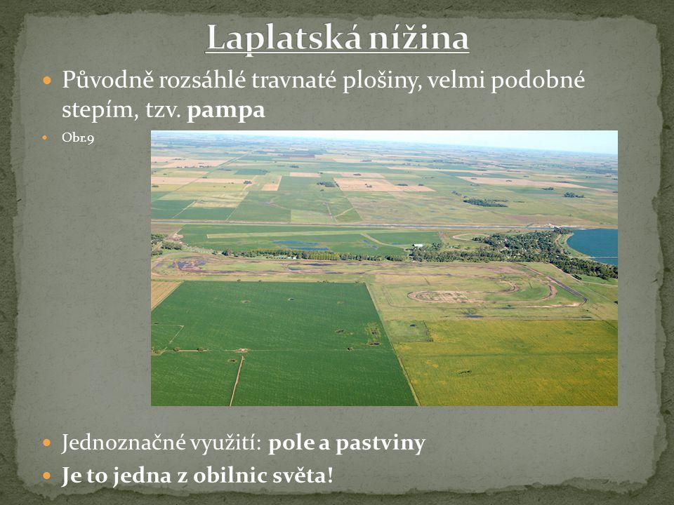 Původně rozsáhlé travnaté plošiny, velmi podobné stepím, tzv. pampa Obr.9 Jednoznačné využití: pole a pastviny Je to jedna z obilnic světa!