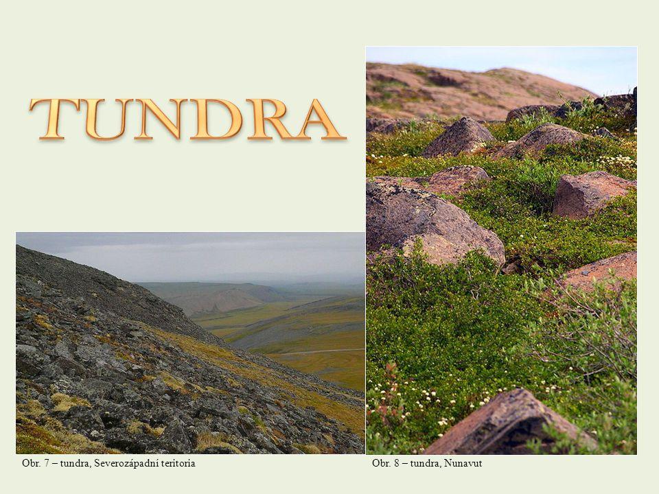 Obr. 7 – tundra, Severozápadní teritoriaObr. 8 – tundra, Nunavut