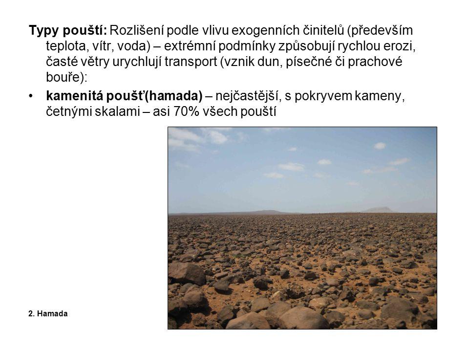 písečná poušť (erg) – s písečnými přesypy (nejvyšší přes 400 m), asi 20% 3.