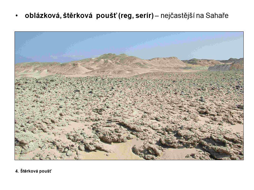 solná poušť (šott, sebek) – v místech s výraznou převahou výparu nad srážkami, vláha tedy stoupá k povrchu a přináší sebou minerály – vznik tvrdé kůry.