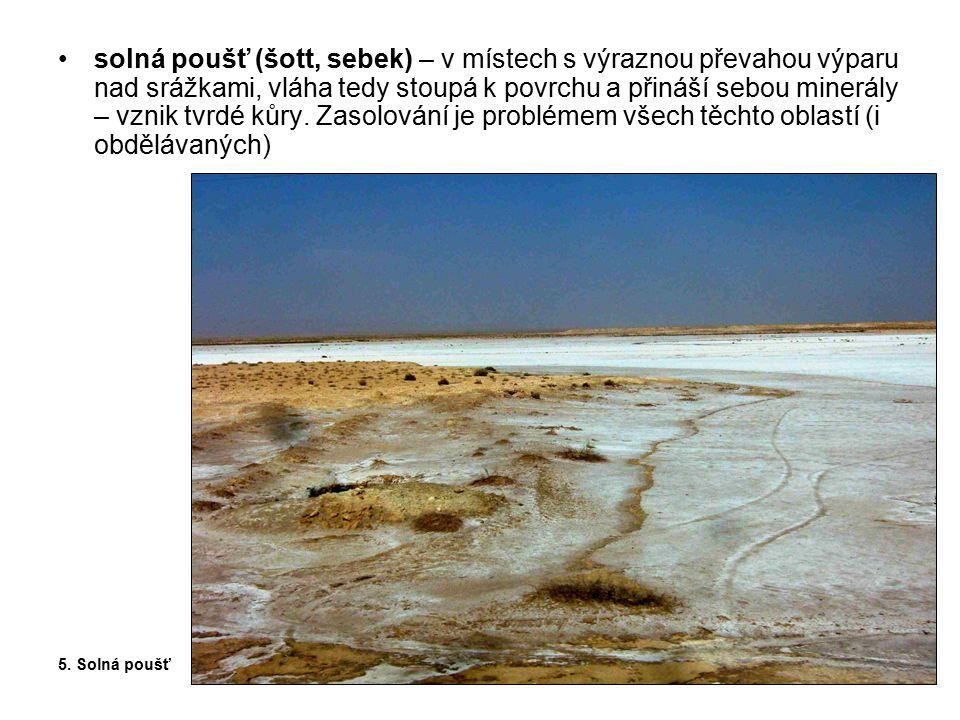 solná poušť (šott, sebek) – v místech s výraznou převahou výparu nad srážkami, vláha tedy stoupá k povrchu a přináší sebou minerály – vznik tvrdé kůry