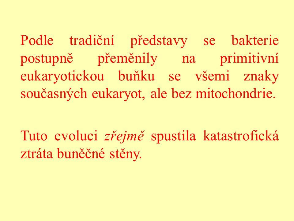 Podle tradiční představy se bakterie postupně přeměnily na primitivní eukaryotickou buňku se všemi znaky současných eukaryot, ale bez mitochondrie. Tu