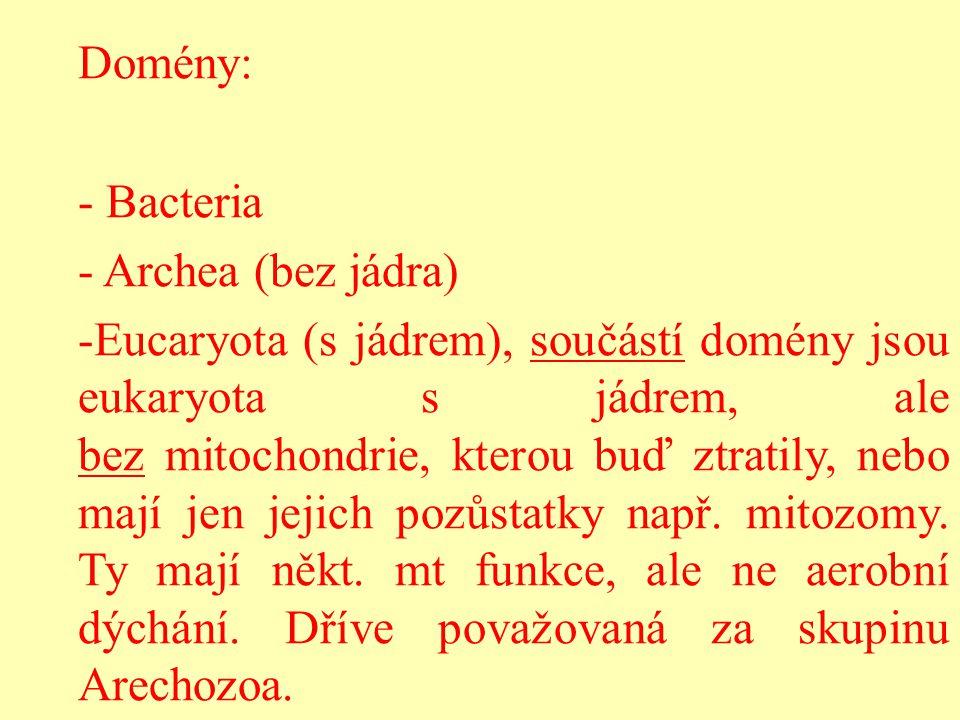 Domény: - Bacteria - Archea (bez jádra) -Eucaryota (s jádrem), součástí domény jsou eukaryota s jádrem, ale bez mitochondrie, kterou buď ztratily, neb