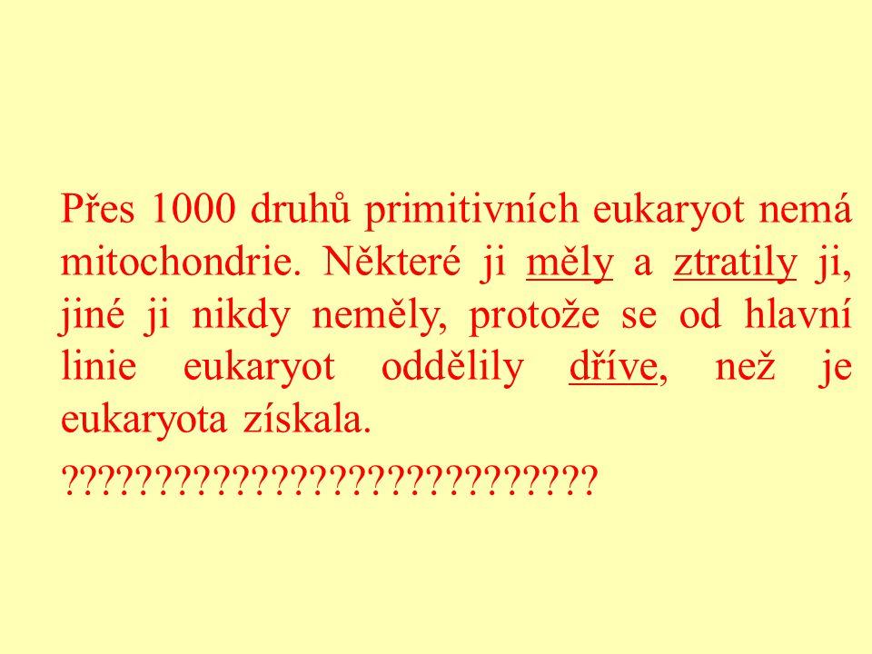 Přes 1000 druhů primitivních eukaryot nemá mitochondrie. Některé ji měly a ztratily ji, jiné ji nikdy neměly, protože se od hlavní linie eukaryot oddě
