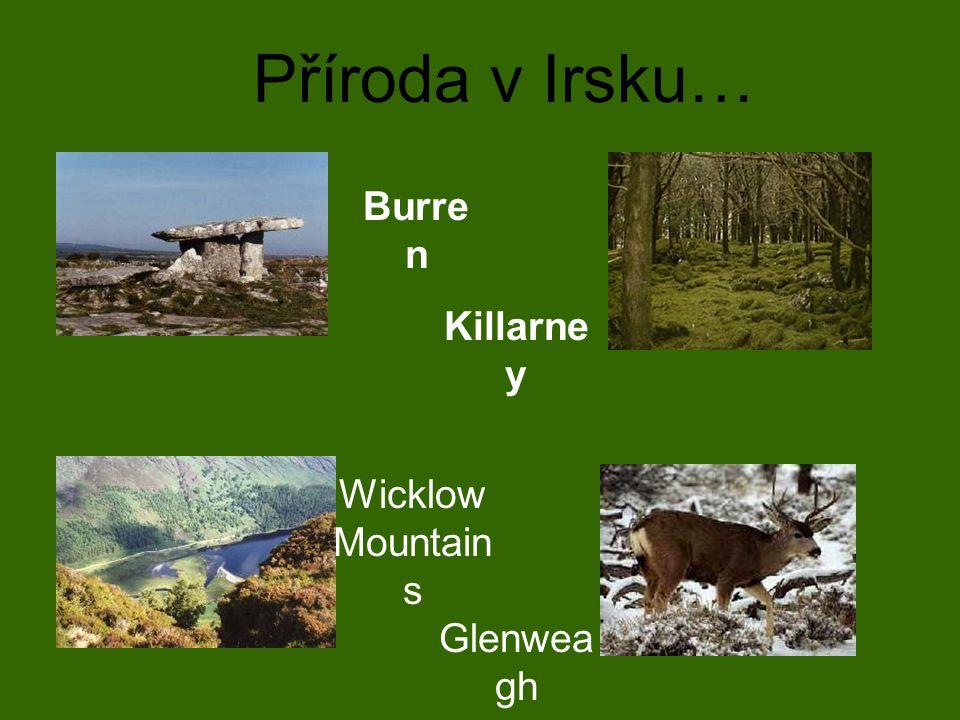 Burre n Killarne y Wicklow Mountain s Glenwea gh Příroda v Irsku…