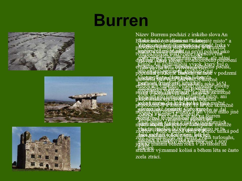 Burren Vápencový kraj Burrenu na západě Irska v hrabství Clare působí na první pohled jako zcela mrtvá a nehostinná pustina, ale zdání klame. Asi nejz
