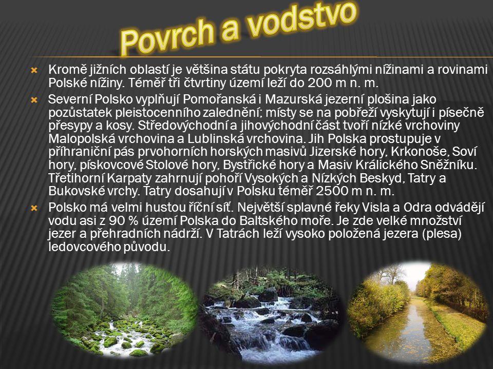  Kromě jižních oblastí je většina státu pokryta rozsáhlými nížinami a rovinami Polské nížiny. Téměř tři čtvrtiny území leží do 200 m n. m.  Severní
