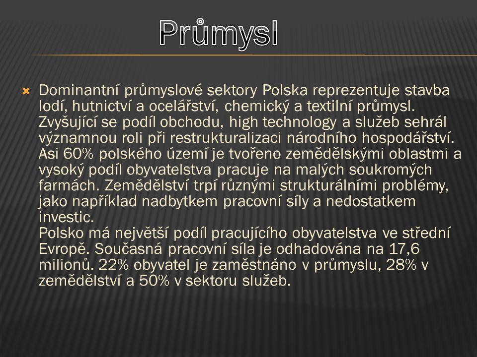  Dominantní průmyslové sektory Polska reprezentuje stavba lodí, hutnictví a ocelářství, chemický a textilní průmysl. Zvyšující se podíl obchodu, high