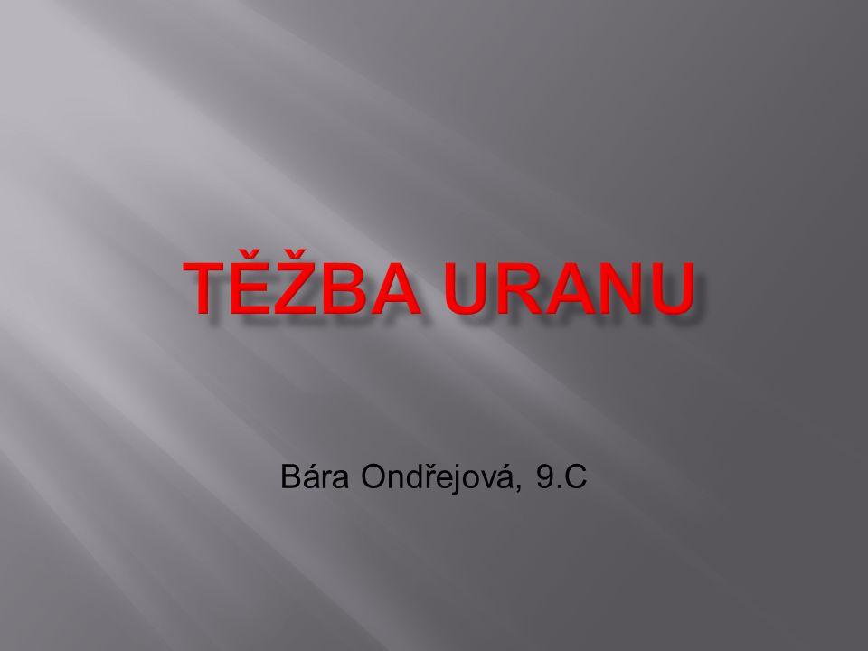 Bára Ondřejová, 9.C