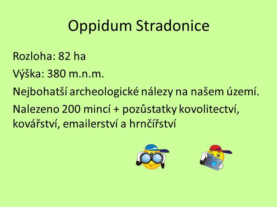Oppidum Stradonice Rozloha: 82 ha Výška: 380 m.n.m.