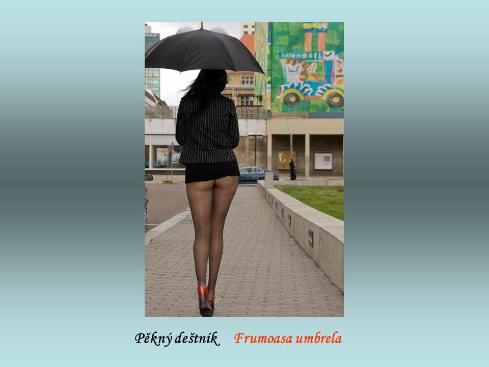 Pěkný deštník Frumoasa umbrela