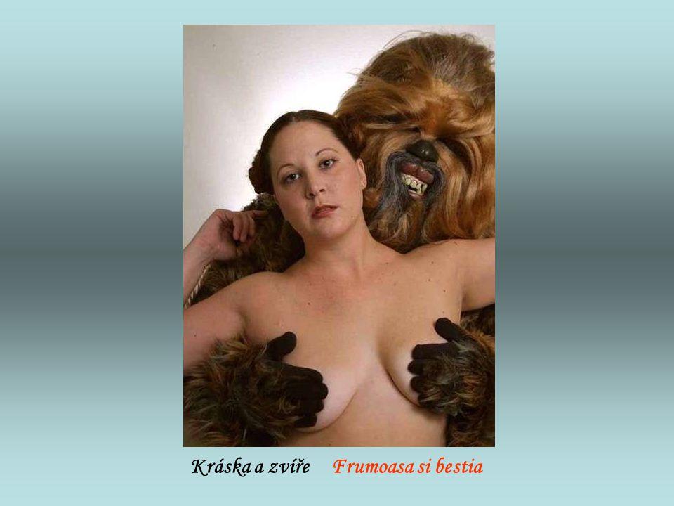 Kráska a zvíře Frumoasa si bestia