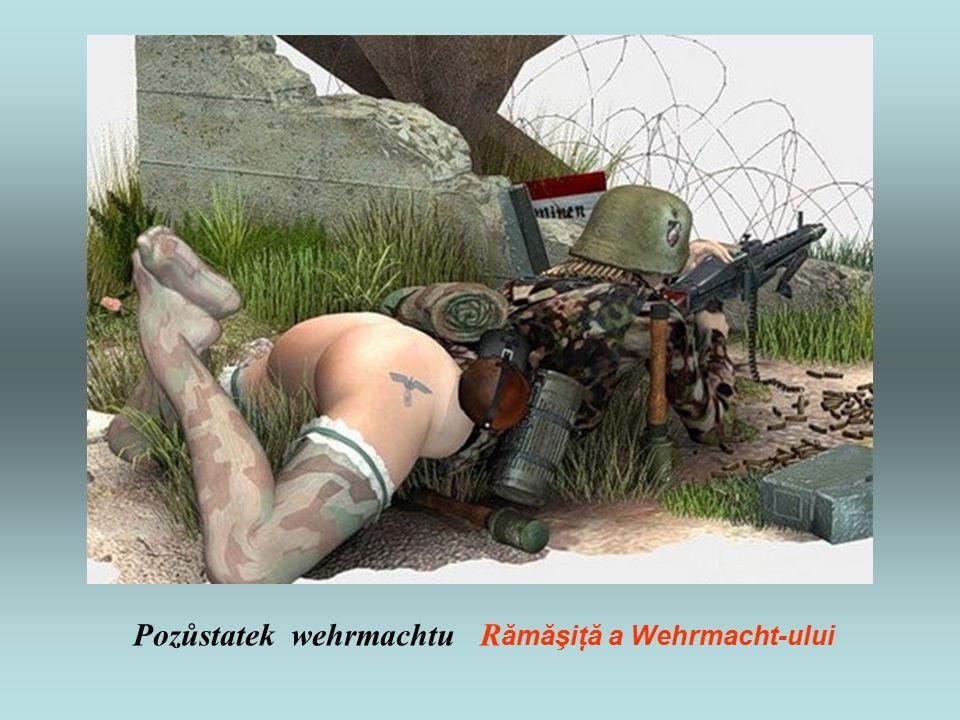 Pozůstatek wehrmachtu R ămăşiţă a Wehrmacht-ului
