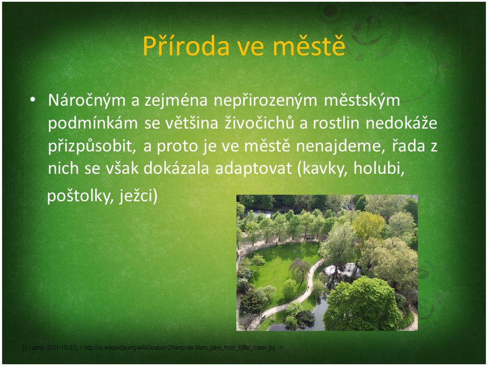 Příroda ve městě Náročným a zejména nepřirozeným městským podmínkám se většina živočichů a rostlin nedokáže přizpůsobit, a proto je ve městě nenajdeme
