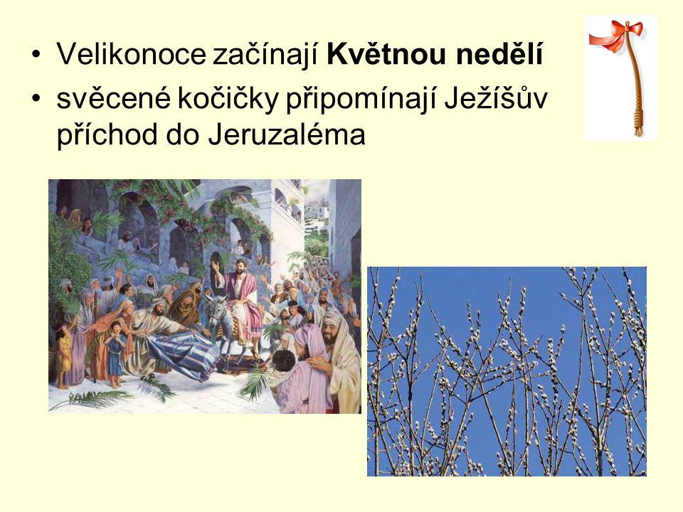 Velikonoce začínají Květnou nedělí svěcené kočičky připomínají Ježíšův příchod do Jeruzaléma