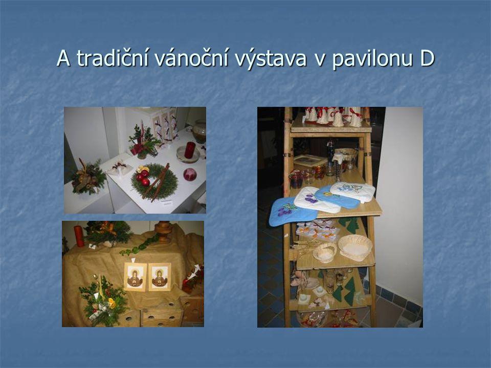 A tradiční vánoční výstava v pavilonu D