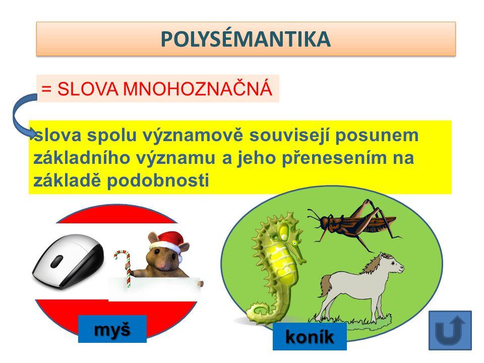 POLYSÉMANTIKA slova spolu významově souvisejí posunem základního významu a jeho přenesením na základě podobnosti = SLOVA MNOHOZNAČNÁ koník myš