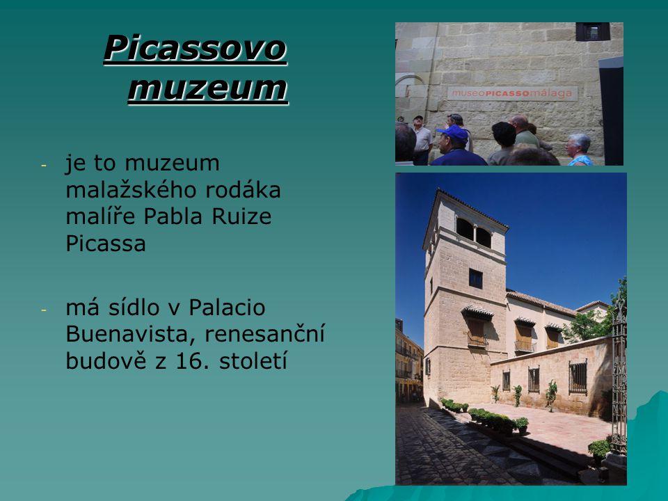 Picassovo muzeum - - je to muzeum malažského rodáka malíře Pabla Ruize Picassa - - má sídlo v Palacio Buenavista, renesanční budově z 16. století
